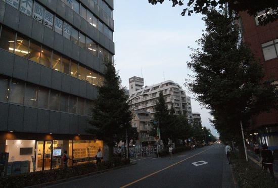 mitamunokawa01.jpg