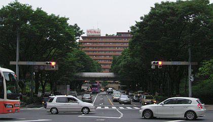 nagatani02.jpg