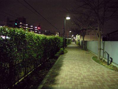 nakano_hill05.jpg