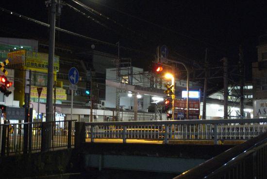 saginosugi07.jpg