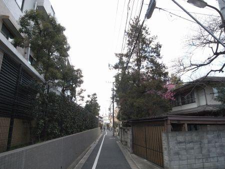 KzosiGH015.jpg