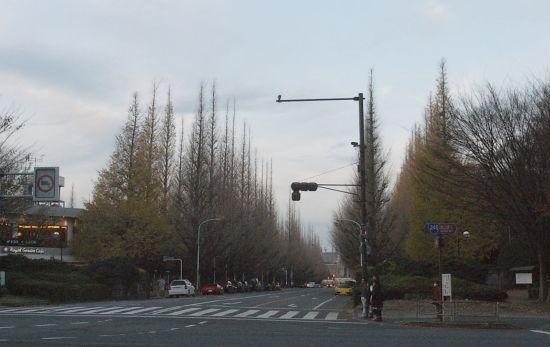 aojimu5_02.jpg