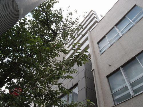 busakaii09.jpg