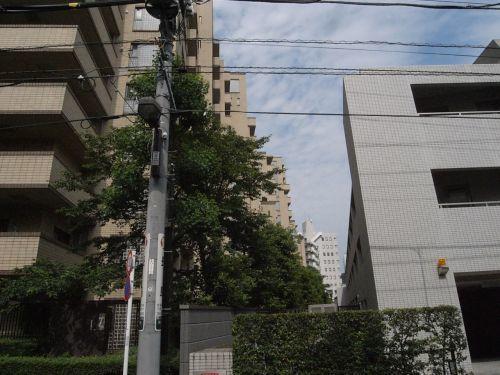 busakaii13.jpg
