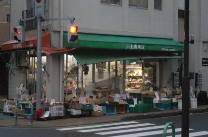 chiyoko-08.jpg