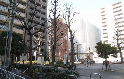 gyoedai06.jpg