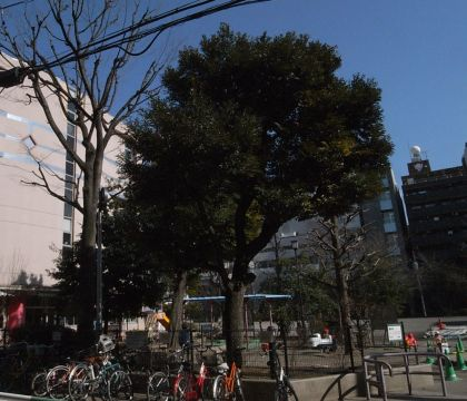 gyoedai12.jpg