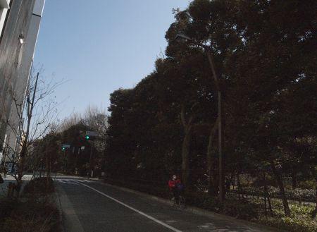 gyoedai15.jpg