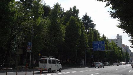 higasikoe02.jpg