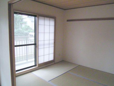hikaheiwa12.jpg