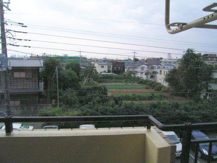 hikaheiwa19.jpg
