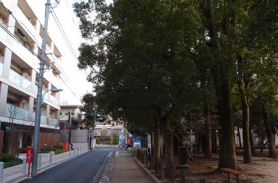 hikikiujr14.jpg