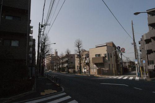 hujisagino03.jpg