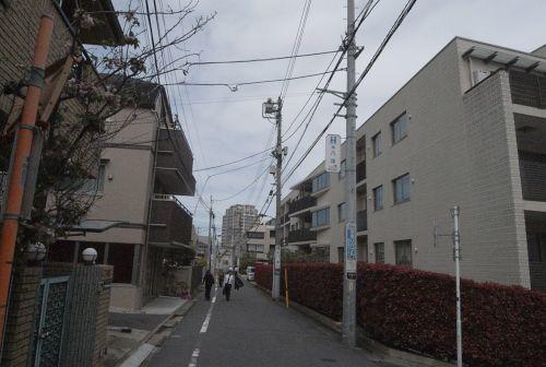 iikanodo04.jpg