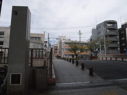 iikanodo11.jpg