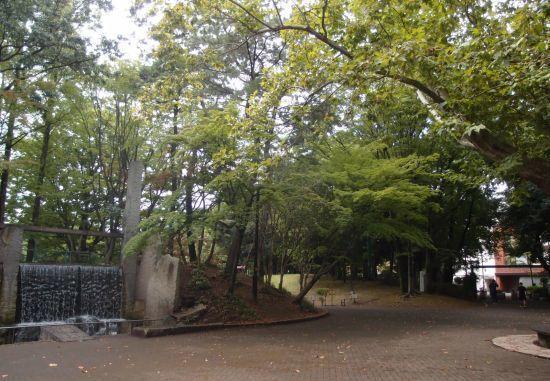 koasamonoi04.jpg