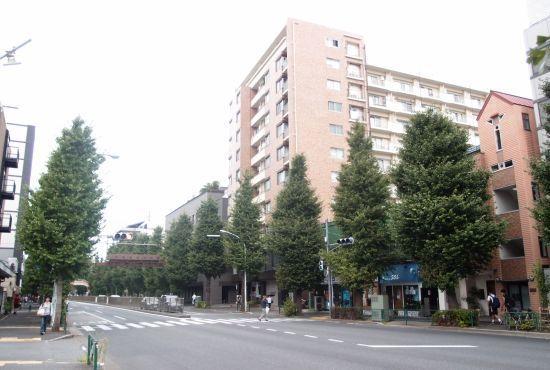 koasamonoi09.jpg