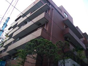 yoyogimaru1