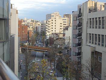 yoyogimaru14