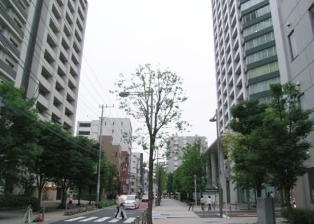 minatodaita04.jpg