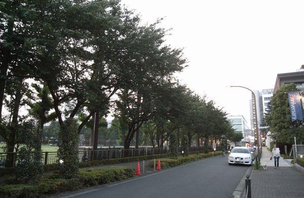 mitamunokawa04.jpg