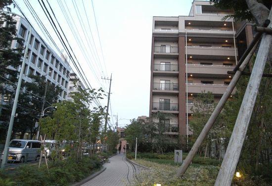 mitamunokawa06.jpg