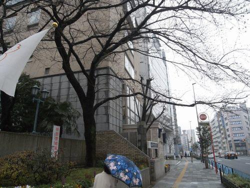 miyotohai05.jpg