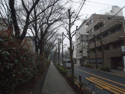 miyotohai06.jpg