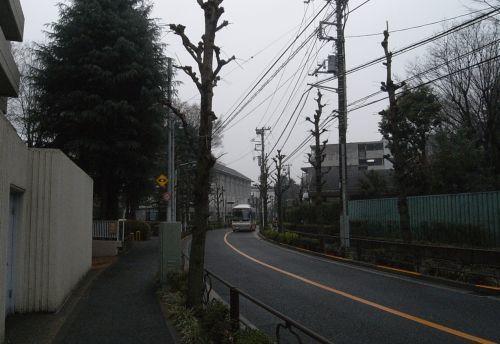 miyotohai07.jpg