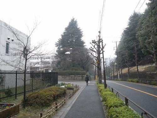 miyotohai09.jpg
