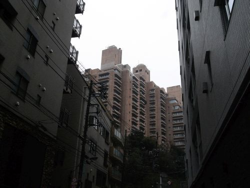 miyotohai22.jpg