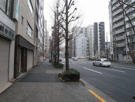 miyotohai27.jpg