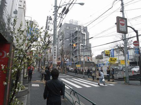 miyotohai40.jpg