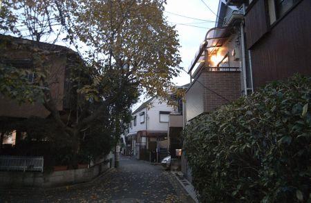 nakanoyakusi12.jpg