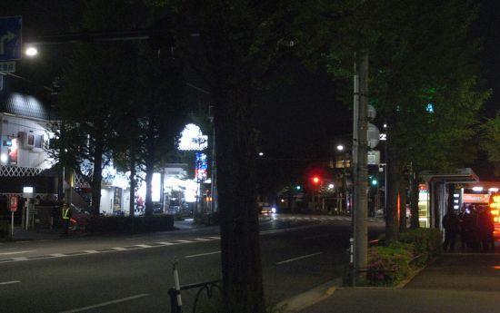oginineko19.jpg