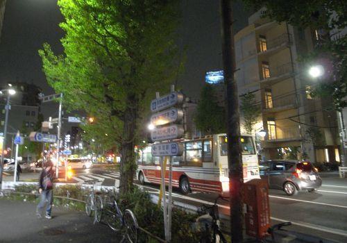oginineko33.jpg