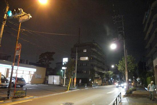 saginosugi12.jpg