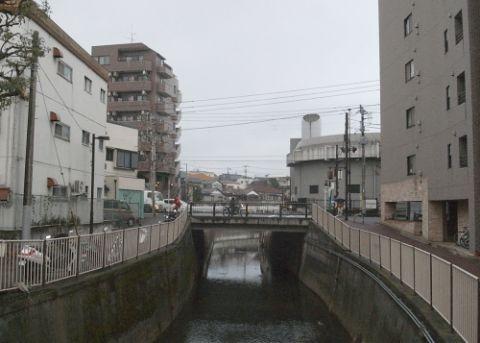 sasahou08.jpg