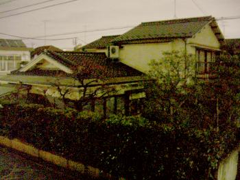 setagayano4503.png