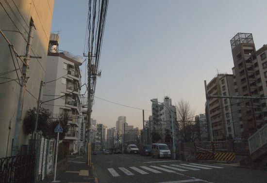 sibinahigashi10.jpg