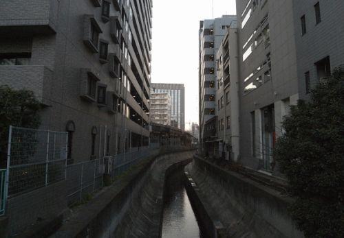 sibinahigashi17.jpg