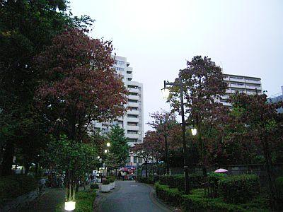 tyuusyaku04.jpg
