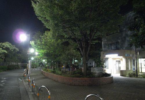 wahidkyu04.jpg
