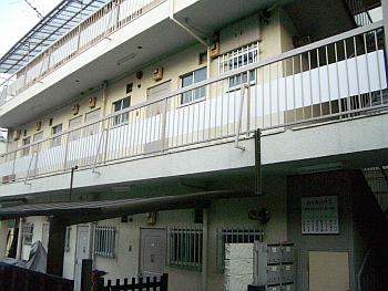 yoyogihau06.png