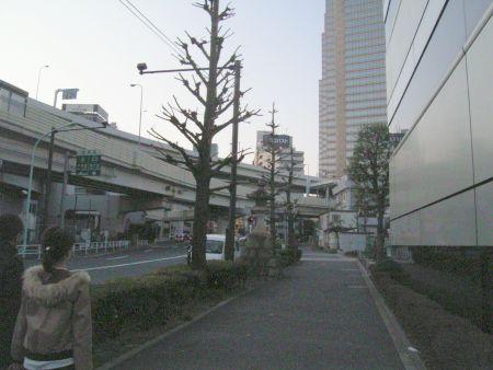 yoyora10.jpg